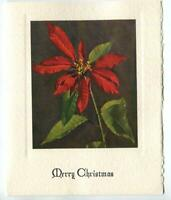 VINTAGE CHRISTMAS RED POINSETTIA PLANT BOTANICAL NATURE ART PRINT GREETING CARD