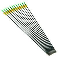 "6pcs Archery Hunting Practice Arrows Fiberglas 30""Shaft Plastic Vanes"