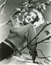 Marlene Dietrich 8x10 photo U0977