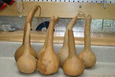5 SHORT HANDLE DIPPER GOURDS