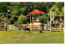 Western Thrills-Spills-Boys Ranch Rodeo-Amarillo-Texas-Vintage Linen Postcard