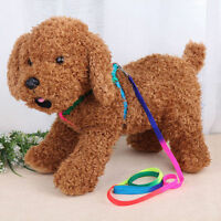 Dog/Puppy/Pet Luminous/Rainbow Coloured Adjustable Harness & Lead/Leash  lx