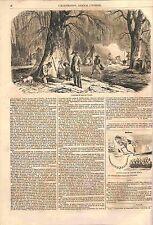 Extraction du Sirop d'érable sucre du Canada et USA GRAVURE ANTIQUE PRINT 1856