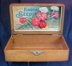 Vintage D. M. Ferry Flower Seeds Oak Box Dovetailed Case Detroit MI