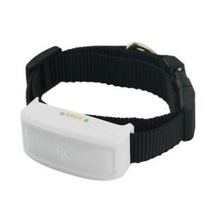 Real time Wifi GPS Tracker TKSTAR TK911 for dogs cats long standby time,No box
