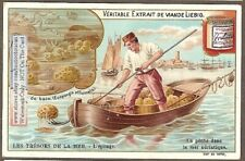 Harvesting Sponge Sea Ocean Espongia c1902 Trade Ad Card