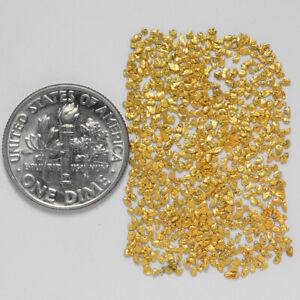 0.9092 Gram Alaska Natural Gold Nuggets --- (#63595-30) - Alaskan Gold Nuggets