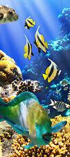 Türtapete Unterwasserwelt TT009 Größe: 90x200 cm Tapete Riff Fische Koralle