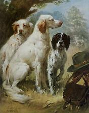 ENGLISH SETTER GUN DOG FINE ART LIMITED EDITION PRINT - by Joseph Sulkowski