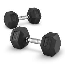 Lot 2x haltère 22,5 kg entraînement muscu dumbell Fitness training bodybuilding