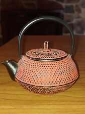 New Oriental Cast Iron Enamel Teapot With Infuser