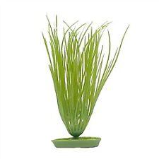 Marina AquaScaper 20cm - Hairgrass