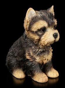 Hunde Welpen Figur - Yorkshire Terrier - niedliches Hündchen süße Welpenstatue
