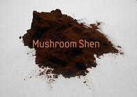 Wild Harvested Siberian Chaga Mushroom Extract POTENT Betulin SOD longevity