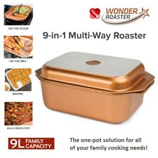 NON-STICK Oven Stovetop BBQ Roaster Grill Roasting Pan Stew Casserole One Pot