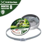 Flea Collar For Dog Cat  Flea and Tick Protection For Up to 8 Months Pet Supplie