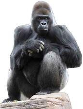 SC-67 Gorilla H.126cm Aufsteller Pappaufsteller Pappkamerad Pappfigur Tier Figur