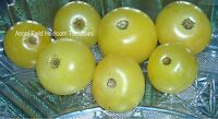 "Garden Seeds ""20 Super Snow White Cherry Historical Heirloom Tomato Seeds"""