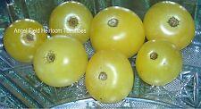 "100 Super Snow White Cherry Tomato Seeds"" Angel Field Fruit & Vegetable Seeds"