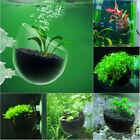 Aquarium Aquatic Live Plant Growing Pot Bowl Holder Suction Cup for Fish Tank