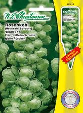 Rosenkohl 20 Samen ERTRAGREICH und WINTERHART! Long Island Improved