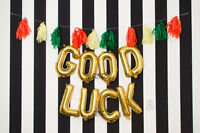 GOOD LUCK 16 Inch Letter Balloons Rose Gold Silver Leaving Party Retirement