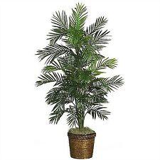 Пальмовое дерево