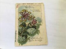 Chromo - Chocolat Poulain - «Nos fleurs» Chévrefeuille et Boule de neige