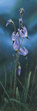 """Shooting Stars and Ladybug"" Stephen Lyman Smallwork Giclee Canvas"