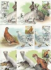 Belarus Weissrussland MNH** 2020 Mi.1343-48 Max Seasonal Animals