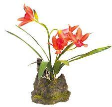 Lucky Reptile Décoration pour Terrarium Orchidée verticale