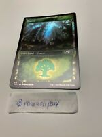 x10 FOIL Forest *M20* Core Set 2020 MTG *Basic Land* Card# 279//280