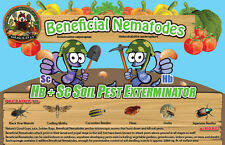 10 Million Live Beneficial Nematodes Hb & Sc - Kills Over 200 Different Species