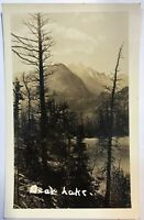 Bear Lake RPPC California Trees & Mountain Scenery Postcard Real Photo Vintage