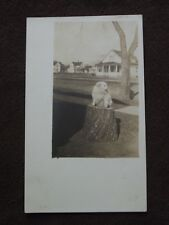 FLUFFY WHITE DOG ON STUMP IN FRONT OF HOUSES  VTG  REAL PHOTO POSTCARD