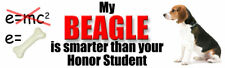 MY BEAGLE IS SMARTER THAN HONOR STUDENT Dog Sticker