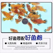 Spirulina/Astaxanthin Stick on Glass Aquarium Fish Shrimp Food Tablets Minerals
