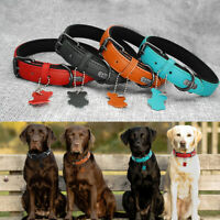 Real Leather Dog Collars Soft Padded for Small Large Dogs Red Black Brown Blue