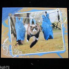 Leanin Tree Thinking Of You Greeting Card Cat MultiColor Notelet Series N105