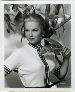 Buxom Blonde Sweater Girl Martha Hyer Original 1956 Classic Hollywood Photograph
