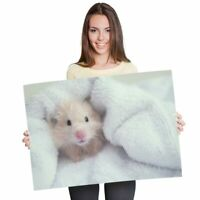 A1 - Cute Fluffy Hamster Pet Poster 60X90cm180gsm Print #3837