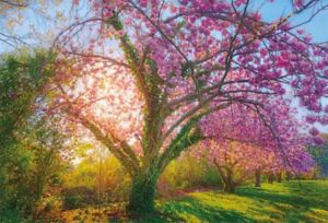 Photo Backdrops Vinyl 5x3FT Spring Pink Cherry Tree Photography Background
