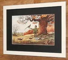 Pheasant Shooting  -12''x16'', Framed Thelwell print,  Comical hunting prints