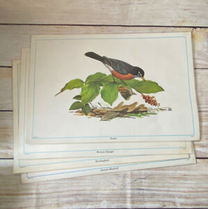 Vintage 1970s Placemats SongBirds Of America Set Of 4
