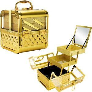 Acrylic Cosmetic Makeup Artist Train Case Organizer 2 Trays and Mirror Keylock