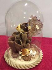 Vtg glass dome taxidermy aquarium fish coral crabs ocean beach tropical aquatic
