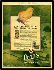 "1928 Pratts Buttermilk Chick Food Vtg. Look 9"" x 12""  Reproduction Aluminum Sign"
