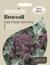 Unwins Pictorial Packet - Vegetable Broccoli Early Purple Sprouting - 300 Seeds