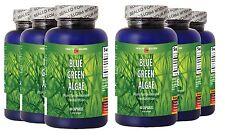 Pure BLUE GREEN ALGAE 500mg - Vegan Beta-carotene - Best Antioxidant - 6 Bottles