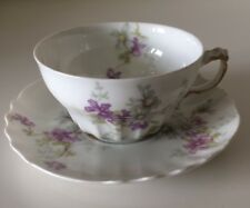 Lovely HAVILAND LIMOGES Schleiger? VIOLETS & DAISIES Cup And Saucer